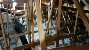 attic-interior