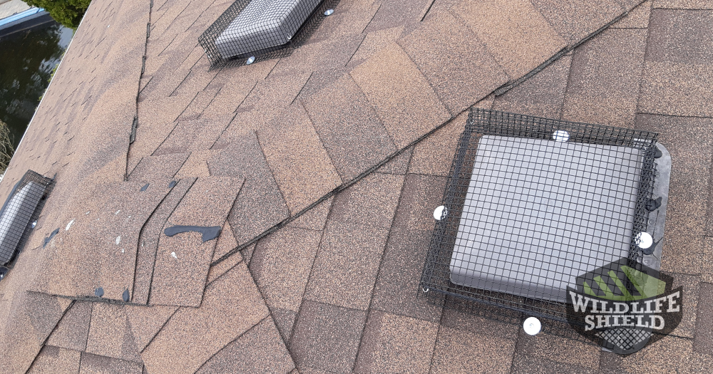 Roof Vent Covers Wildlife-proof